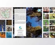 Brochure4Ante 1